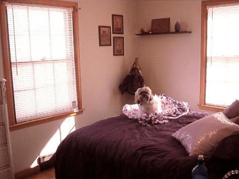 234 S. Franklin - Bedroom #1